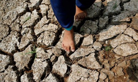 Drought-hit land in Thailand (Image: EPA/R. Yongrit)