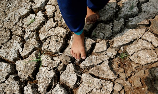 Drought-hit land in Thailand (Image: EPA/R. Yongrit)