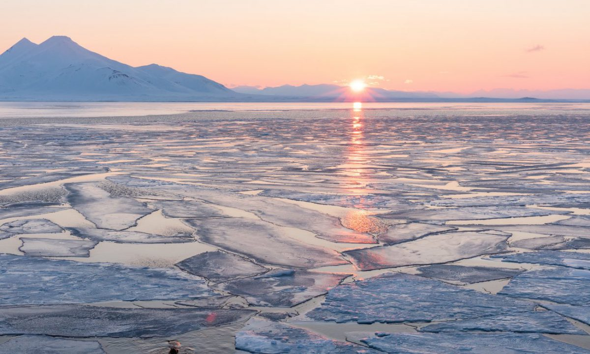 Arctic sea ice under the midnight sun (Image: Solent News/Rex/Shutterstock)