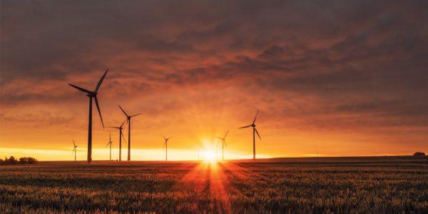 Google set to reach 100% renewable energy in 2017
